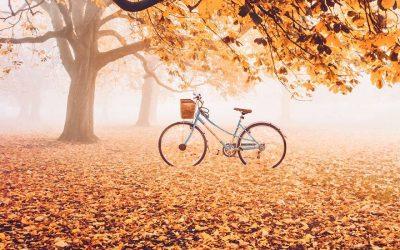 Есента – сезона на предците