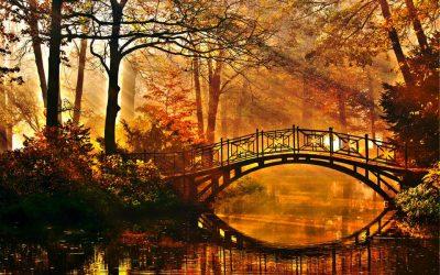 Есен, Листопад, Подзим…