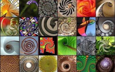 Интелигентният дизайн на Вселената – редицата на Фибоначи и златното сечение