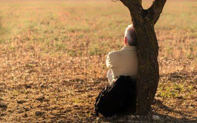 Лекуване чрез енергията на дърветата